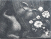 BÍLÁ KAMELIE. 1910. Mezzotinta, 37x46, sign. M. Švabinský. Rozměry pap. 318x243. 30 listů. /q/
