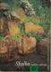 Skalka - Ozdoba zahrady