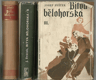 Bitva bělohorská (3knihy)