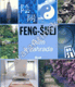 Feng-šuej * Dům a zahrada