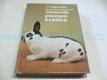 Vzorník plemen králíků
