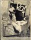 Raf - Obrázkový deník bernardýna Rafa, kočky Míny a malé Krasavice, foxteriéra Ferdy a jejich přátel - Vážné i veselé vyprávění