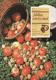 Jablka, ořechy, med