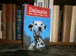 Dalmatin - výběr, držení, výchova, péče