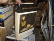 Příkladné novely