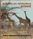 Potulky po východnej Afrike (veľký formát)