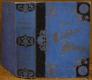 Neues Töchter - Album ( Die Grille, Jane Eyre - die Waise von Lowood, Erzählungen für Kinder und Kinderfreunde)