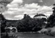 Státní zámek Náměšt´nad Oslavou