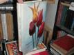 Tulipány a ostatní cibulové květiny