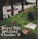 Pražský chodec II