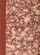 Památník Světozora na 8. slet všesokolský 1926