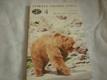 Zvířata celého světa - Medvědi a pandy 4