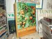 Intenzívní ovocnářství