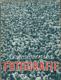 Československá fotografie 1949