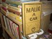 Malíř a car - Život malíře Fedotova