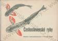 Československé ryby