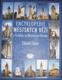 Encyklopedie městských věží v Čechách, na Moravě a ve Slezsku