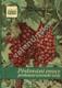 Pěstování ovoce pro konservárenské účely