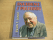 Incident s politikou