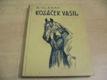 Kozáček Vasil, mstitel. Příběh statečného chlapc