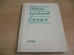 Pišme správně česky a klíč ke cvičením