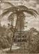 Fysický zeměpis III - Rostlinstvo a živočišstvo