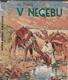 V Negebu
