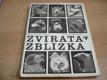 Zvířata zblízka, procházka pražskou zoologicko