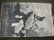 Země fjordů a ság - V. Fiala - 1943