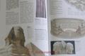 Memo junior : encyklopedie