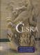 Česká národní rada