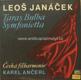 Taras Bulba, Symfonietta