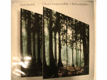On an Overgrown Path, Ulla Erml, piano