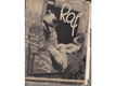 Raf : Obrázkový deník bernardýna Rafa, kočky Míny a malé Krasavice, foxteriéra Ferdy a jejich přátel