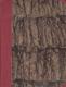Vatikán, listy římského návštěvníka do Čech