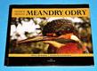 Hraniční meandry Odry