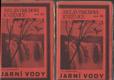 Jarní vody, Rudin (v dvoch knihách)