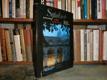 Symfonie pro sto věží (fotografická publikace)