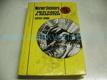 Mezi rakví a Araratem : utopický román