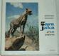 Gara Jaka, příběh geparda