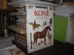 Vidět - Poznat - Vědět: Koně