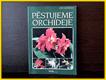 PÄ›stujeme orchideje