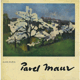 Pavel Maur