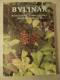Bylinář : rostlinné stimulátory fyzických a duševních sil