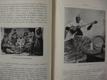 Z OVZDUŠÍ HARÉMŮ A POUŠTÍ Klement Fr. 1909
