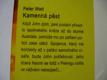 KAMENNÁ PĚST WATT PETER 2009 NOVÁ