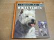 West highland white teriér n
