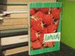 Jahody - pestovanie a zužitkovanie (slovensky)