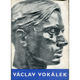 Václav Vokálek: Podobizny