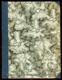 Bílý štít (druhá kniha básní)